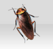 cockroach_image
